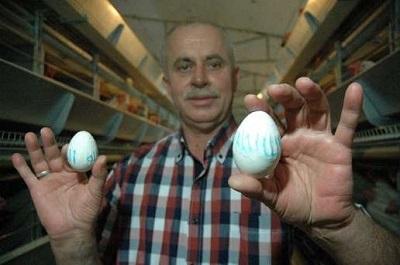 Tekirdağ'da ALLAH Lafzı Yazan Yumurtalar Görenleri Hayrete Düşürdü