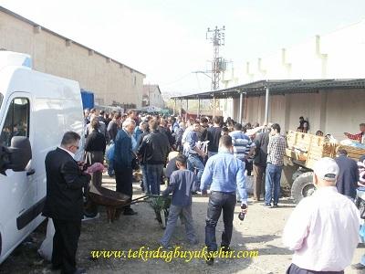 Tekirdağ Büyükşehir Belediyesi Kurban Kesim Yerinden Görüntüler