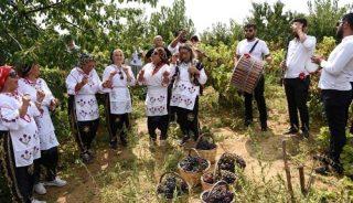 Tekirdağ Şarköy'de Bağbozumu ve Üzüm Festivali düzenlendi